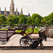 Eurovíkendy: Rakousko - Vídeň a okolí